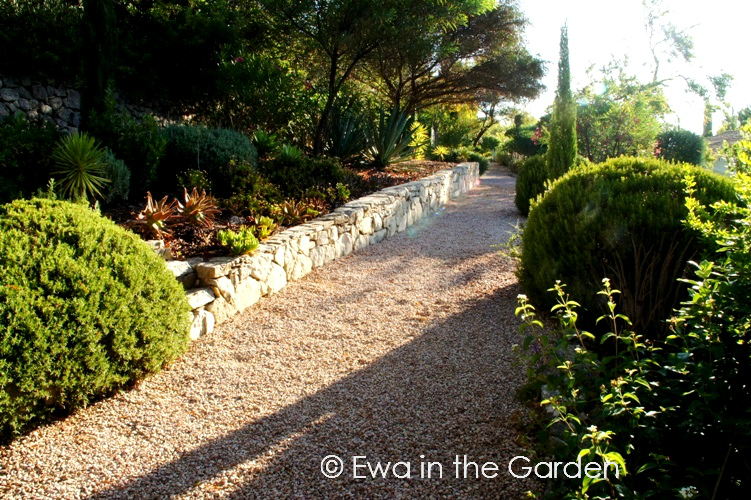 ewa in the garden: 25 photos of casa amarela, organic, Garten seite