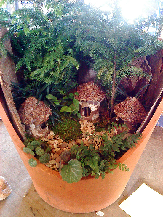 Miniature garden in a broken pot