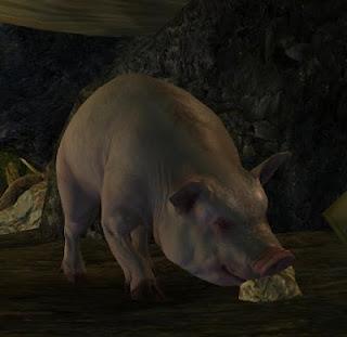 Guild Wars 2 GW2 pig truffles