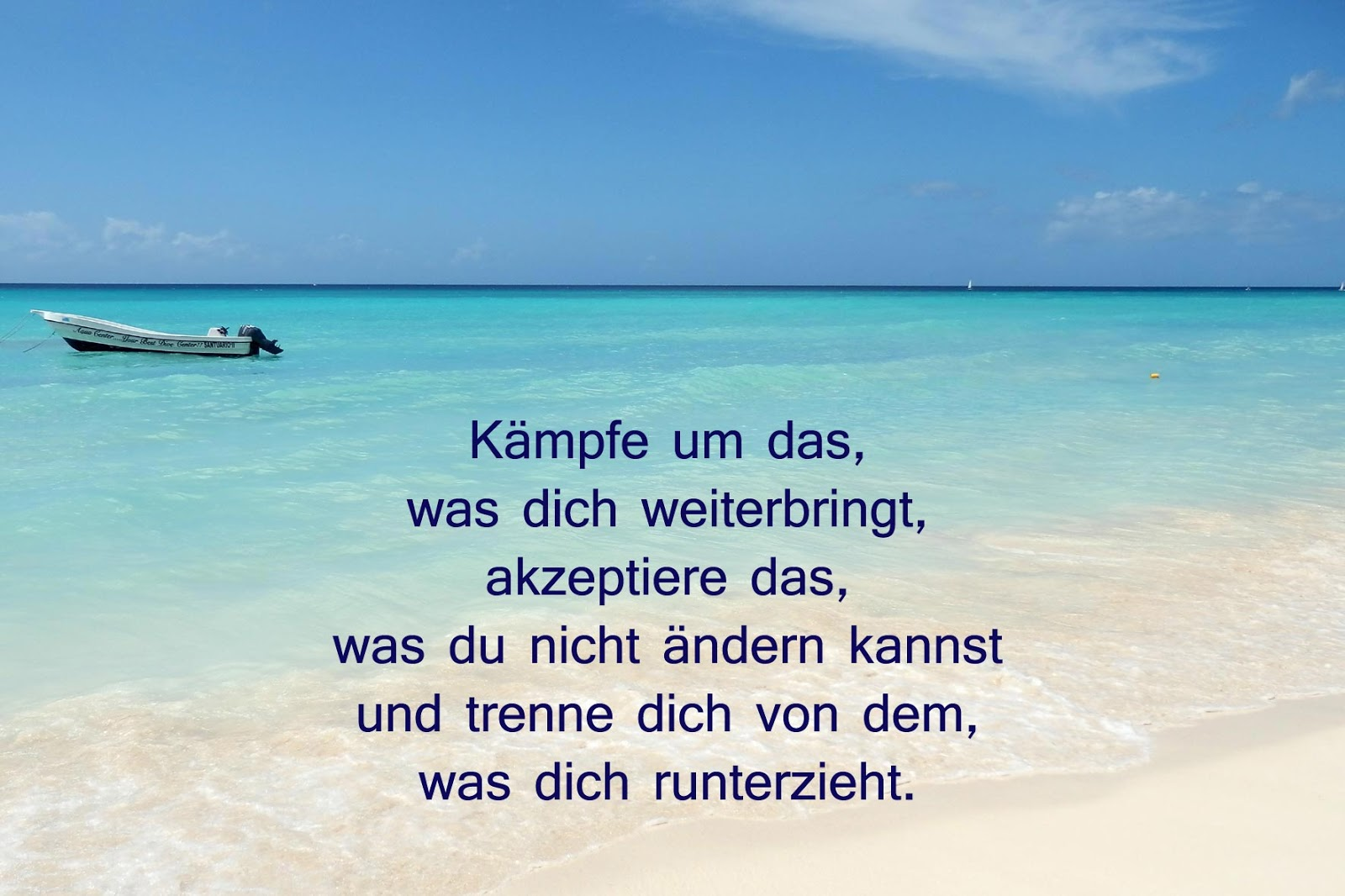 Love it, change it or leave it!: Kämpfe um das, was dich ...
