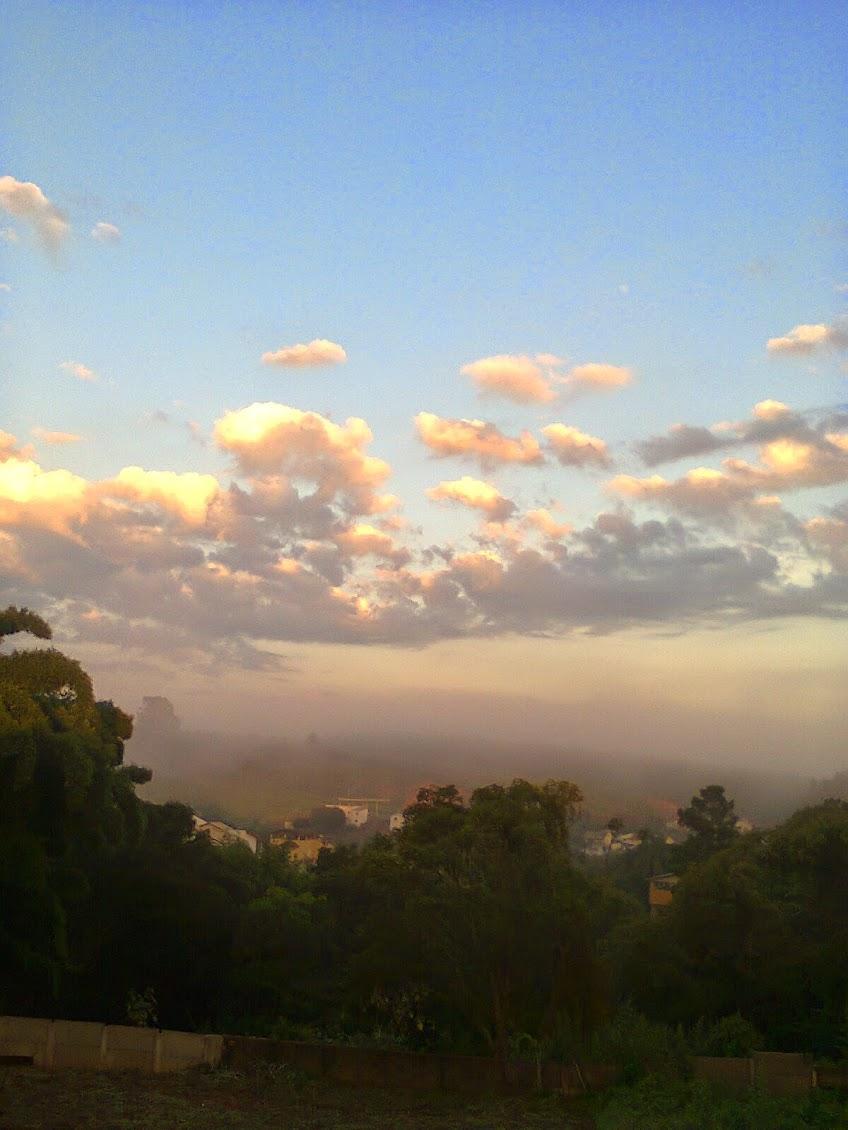 Neblina e nuvens no fundo da horta