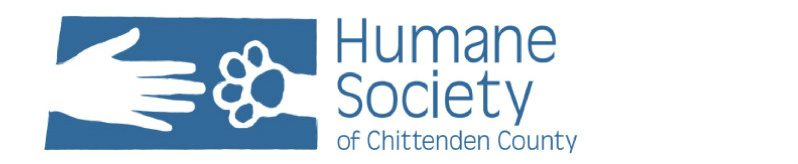 The HSCC Blog