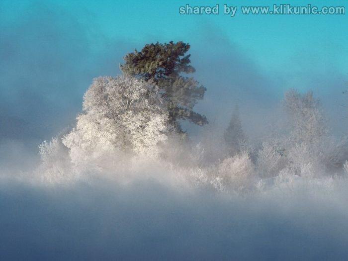 http://1.bp.blogspot.com/-_U1GurSHc0c/TX1jjNGZQxI/AAAAAAAARHQ/XMCTqGzM8Kk/s1600/winter_55.jpg