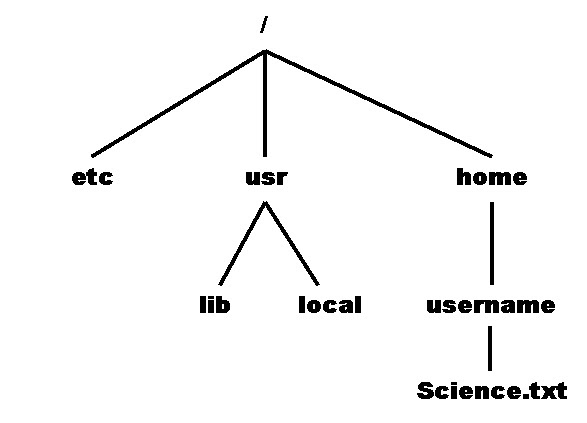 an analysis of unix file system File system: unix and unix-like operating systems employ a hierarchical (ie, inverted tree) directory structure, with the root directory (/) at the top the standard file system has, among others, the following directories:.