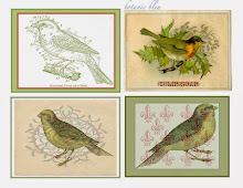 Bird Canvas Ornaments