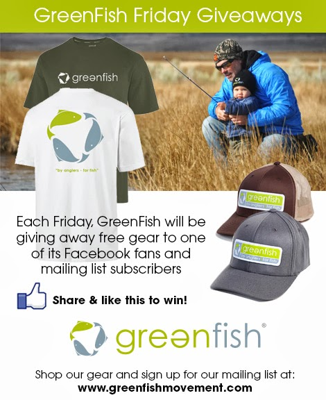 GreenFish Friday Giveaways