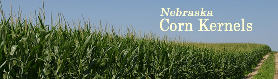 Nebraska Corn Kernels