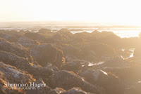Shannon Hager Photography, Sunset, Oregon Coast, Nye Beach