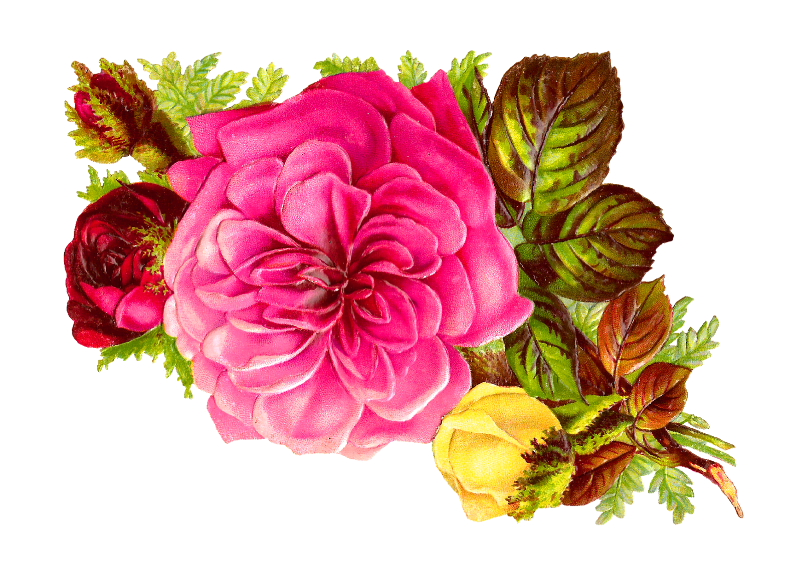 Antique images rose bouquet clip art of pink red and for Images of bouquets of roses