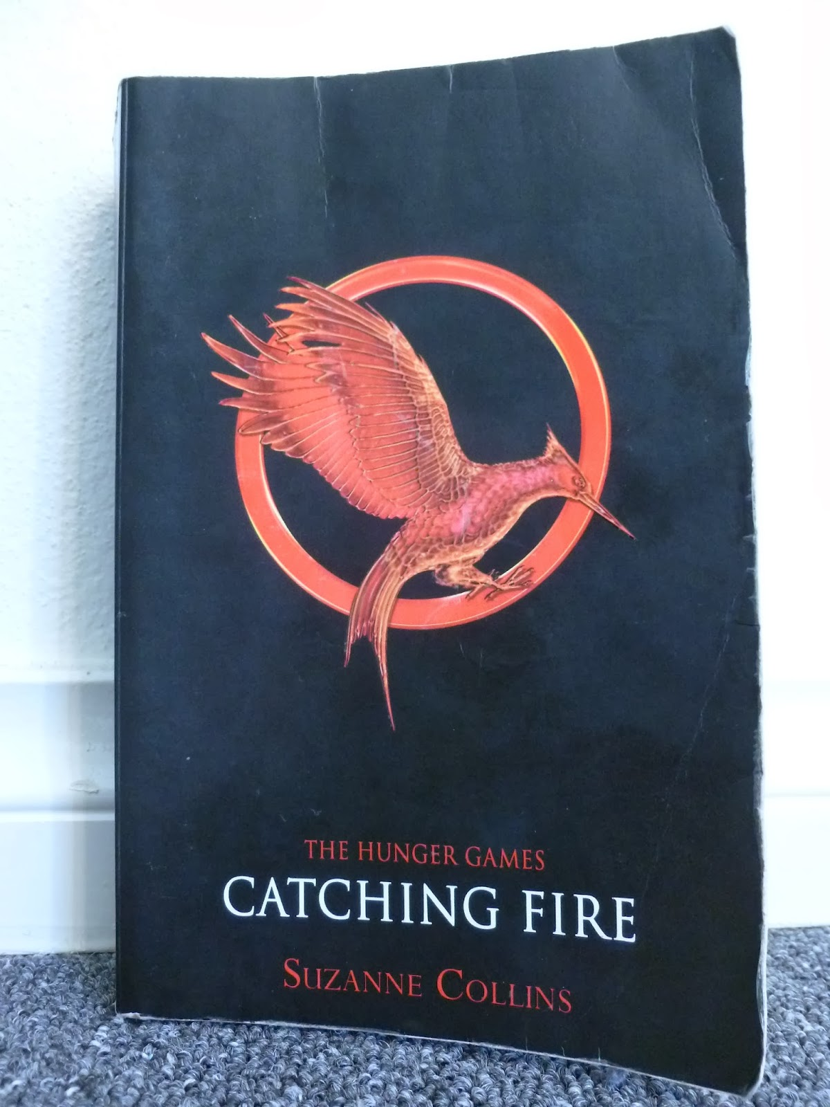 catching fire book report