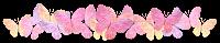 http://1.bp.blogspot.com/-_W5bsH-WDjM/UvCcgqM8w3I/AAAAAAAAHHk/_dzb2V_vh7A/s1600/butterfly-divider-warm-dAJournalHeader.png