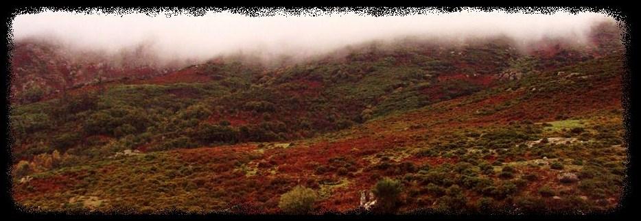 a Serra do Cando, os montes da néboa