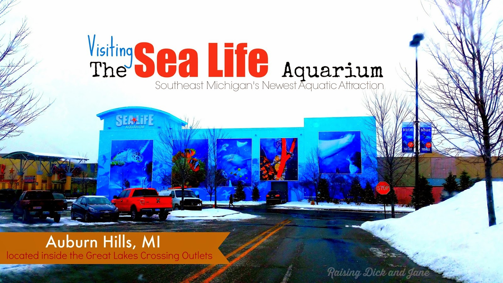 #ad #SeaLifeMI Visit Sea Life Michigan Aquarium Michigan Travel