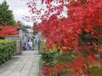 普段は非公開だが11月15日~12月8日までの期間、「秋の特別拝観」が始っている。
