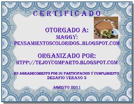 Certificado Desafio Verano 3
