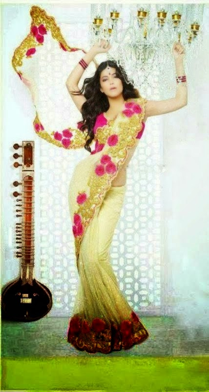 Shruti Haasan showing off her body in saree