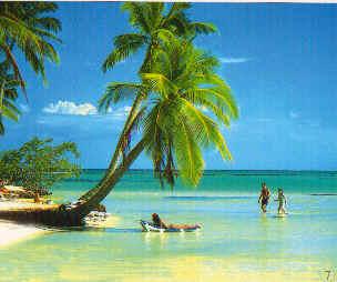 Punta Cana Island