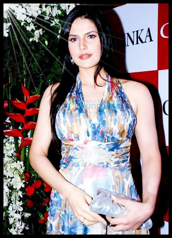 wallpaper zarine khan. hot Zarine Khan who is look alike zarine khan in ready movie wallpaper.