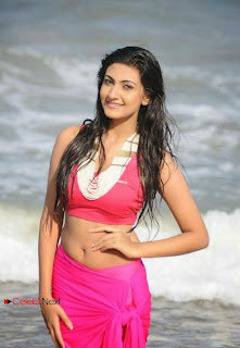 Actress Neelam Upadhyay  Wet Picture Gallery in Pink Bikini Top 0016.jpg