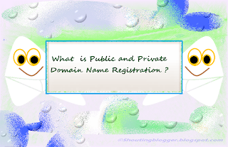 What is Public and Private Domain Registration