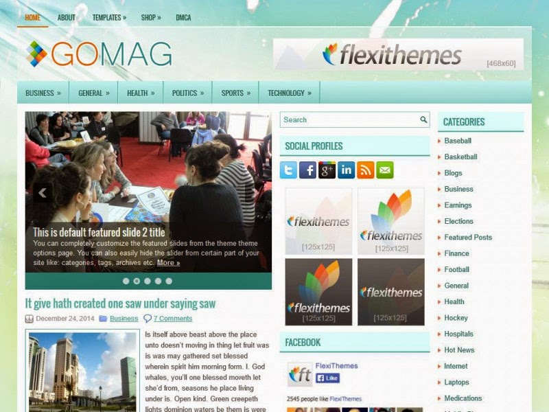 GoMag - Free Wordpress Theme