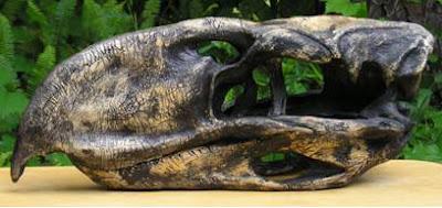 Titanis skull