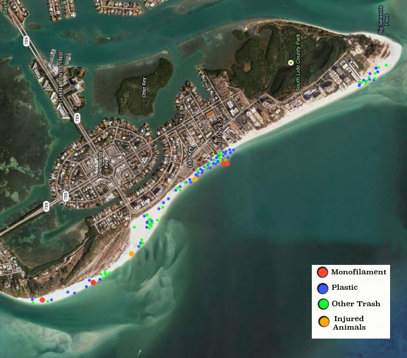 Beach Cleanup Map