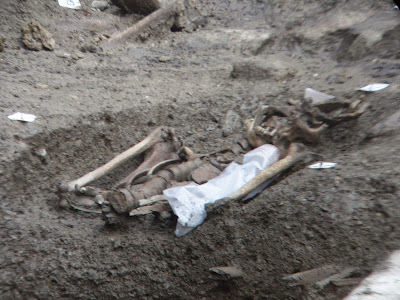 L'un des squelettes exhumé lors de fouilles préventives de l'Inrap Place Saint-Germain de Rennes