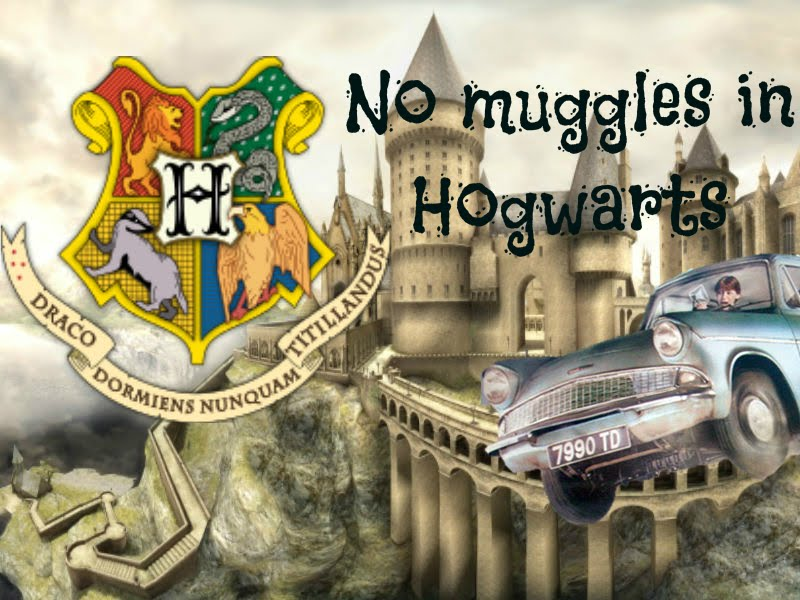 No muggles in Hogwarts!