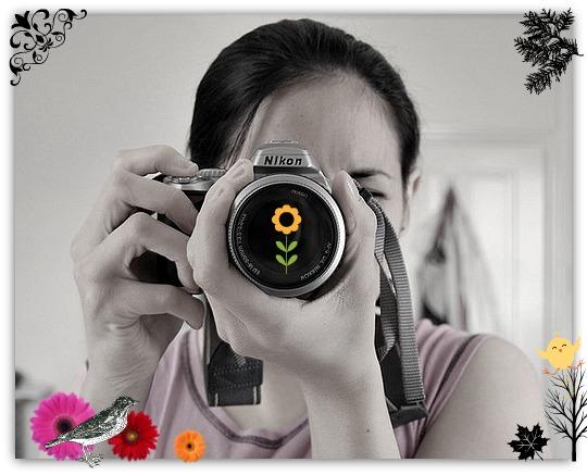 Taking Screenshot using PhotoCamera