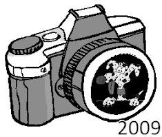 fotogallery 2009