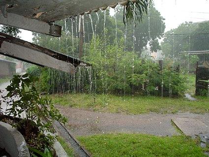 سر رائحة الأرض الترابية بعد هطول المطر