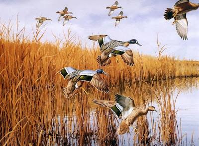 pinturas-de-paisajes-aves