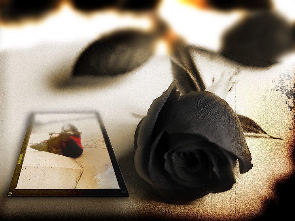 http://1.bp.blogspot.com/-_YH_jsJR75I/Tha9tjCaKoI/AAAAAAAAACU/dwWaDlnrLc4/s1600/Black-Flowers1.jpg