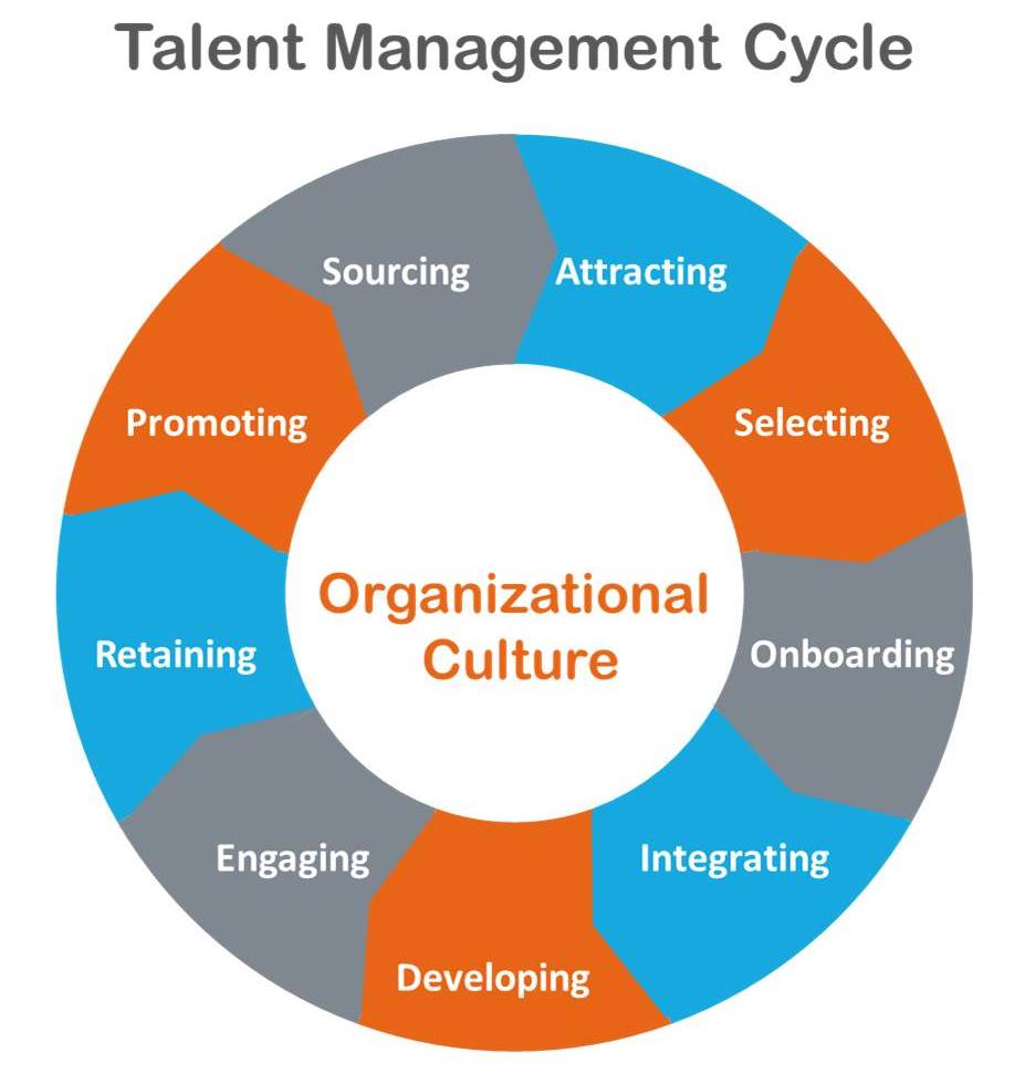 performance management in an organization management essay Performance management organizational performance management strategic planning is a critical step in the management of any organization, regardless of the level.