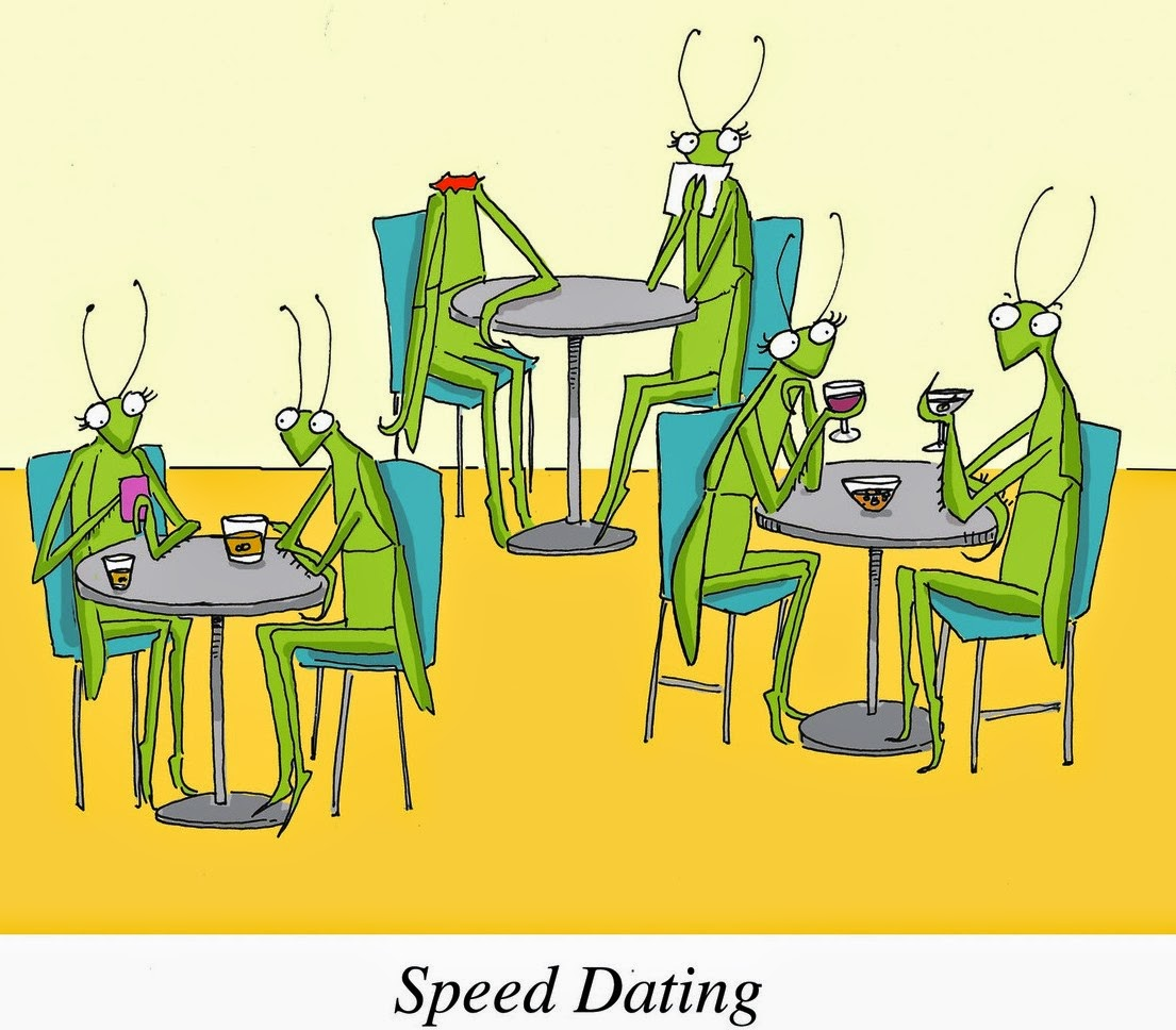 Are Speed Only One And Dating One Norway, where