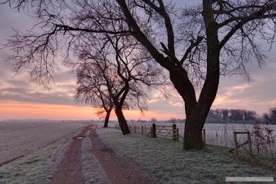 Farm track Stapleford