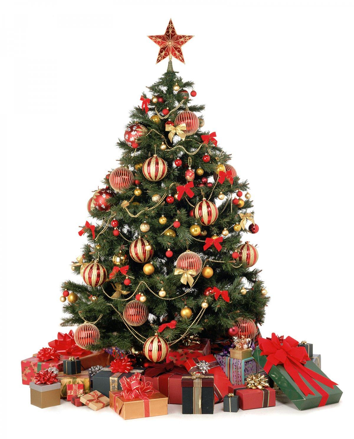 красивые новогодние елки фото