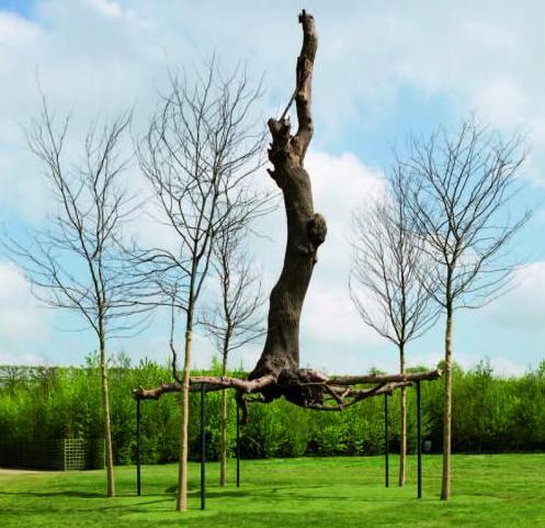 le sculpteur italien giuseppe penonne installe ses uvres dans les jardins du roi soleil le. Black Bedroom Furniture Sets. Home Design Ideas