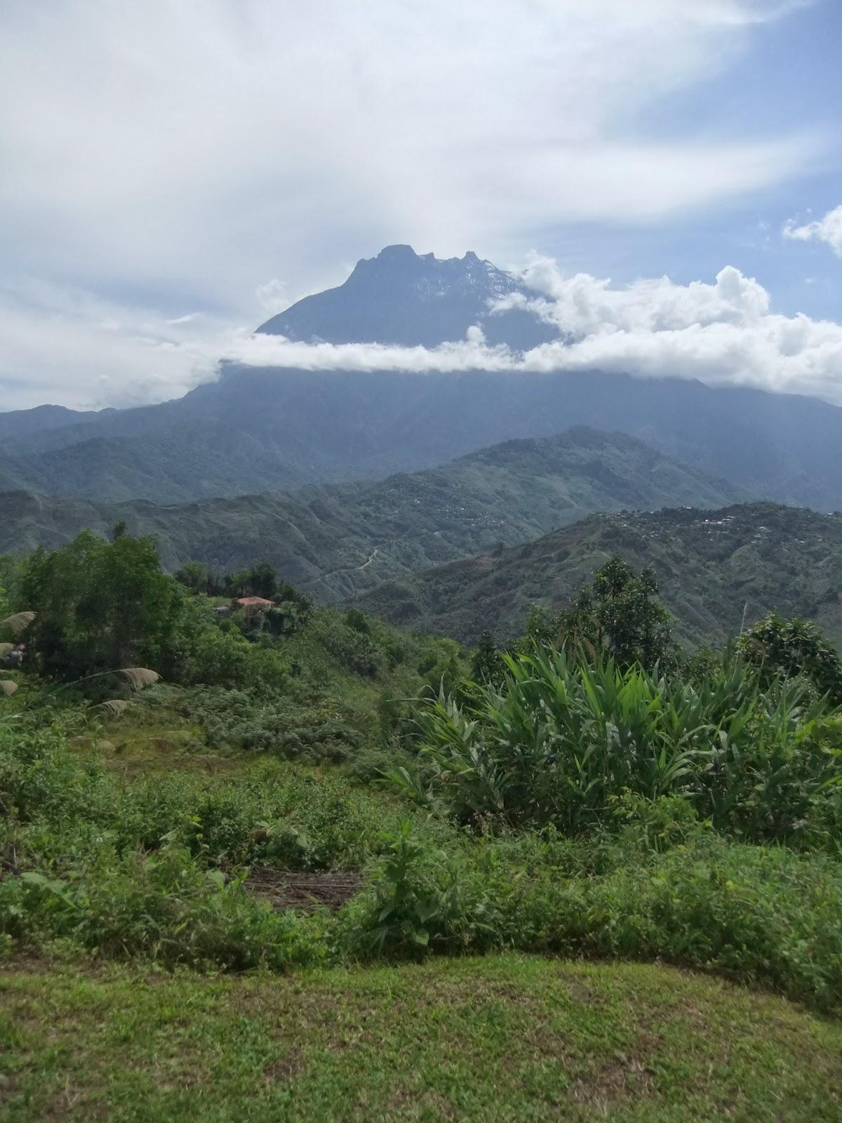 キナバル山の画像 p1_36