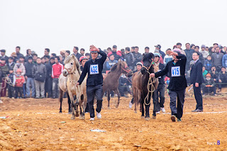 Unique horse racing in Bac Ha  2