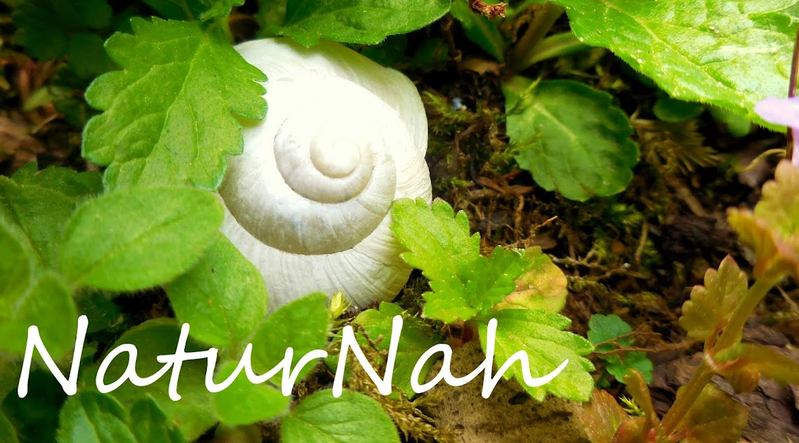 NaturNah