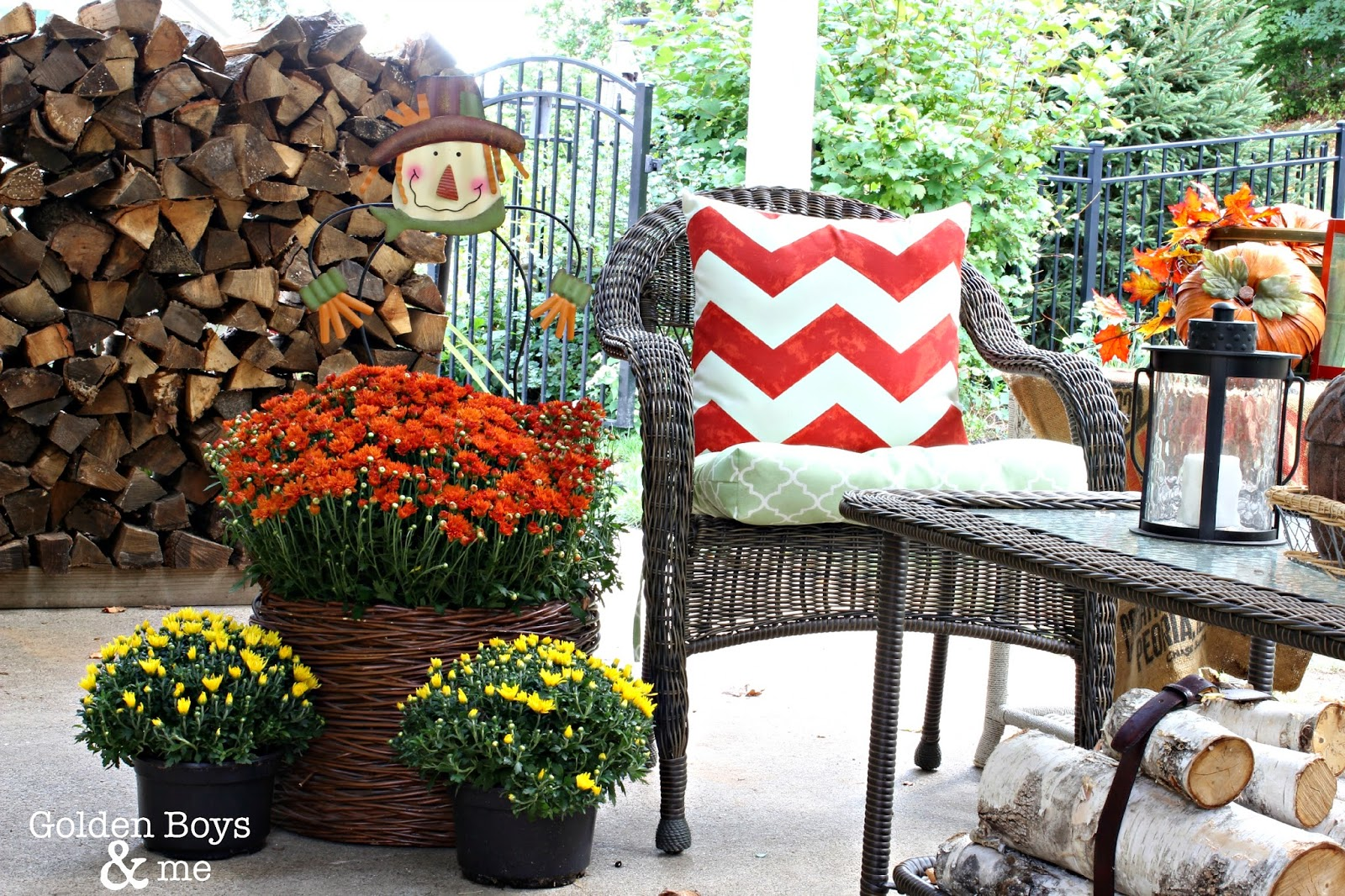 Fall decor in covered patio area with mums in a basket and birch logs tied with a leather belt via www.goldenboysandme.com