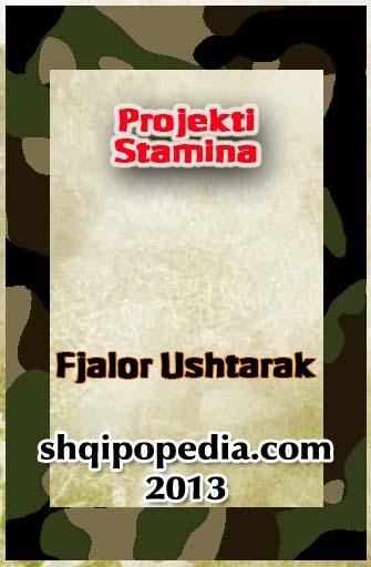 Fjalor Ushtarak