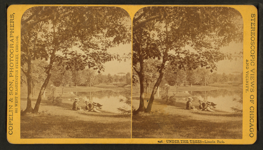 Under the Trees of Linclon Park, Stereoscopic Views of Chicago