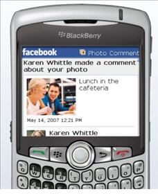 Tampilan Facebook® for BlackBerry®