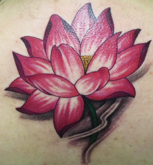 Samantha brick another grt rt f th lotus flower tattoos tht th r customized fr f want thm t b y n gt one sized colored nd add details mightylinksfo