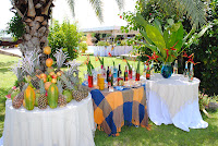 modelos de festas havaiana