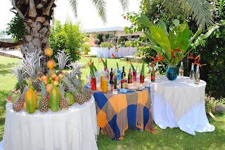 festa havaiana a céu aberto