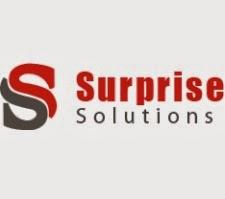 Surprise Solutions Walkin Drive 2014